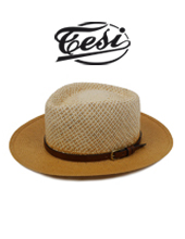 Tesi mix PF Hat